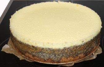 Mohntorte Mit Pudding Mohntortenrezept